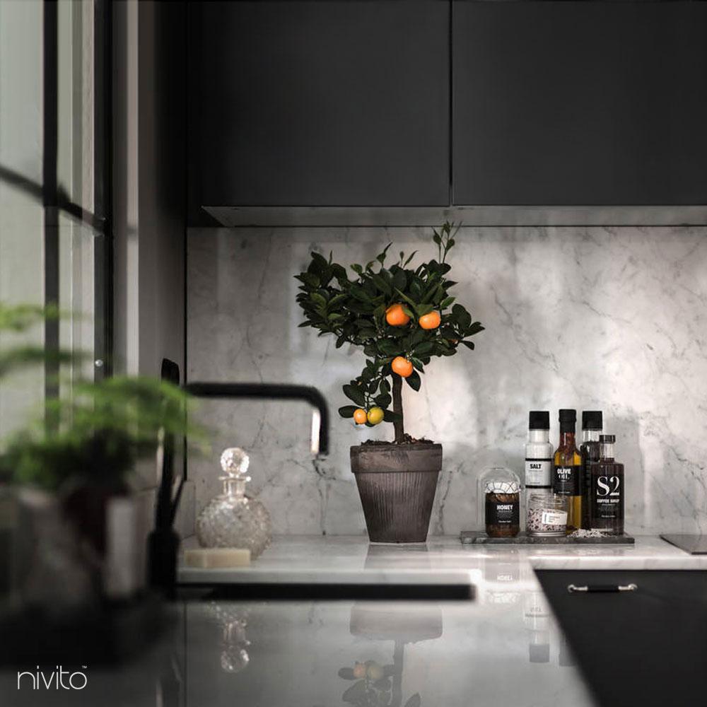 Noir cuisine eau robinetterie